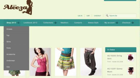 Image for: Aleeza e-commerce