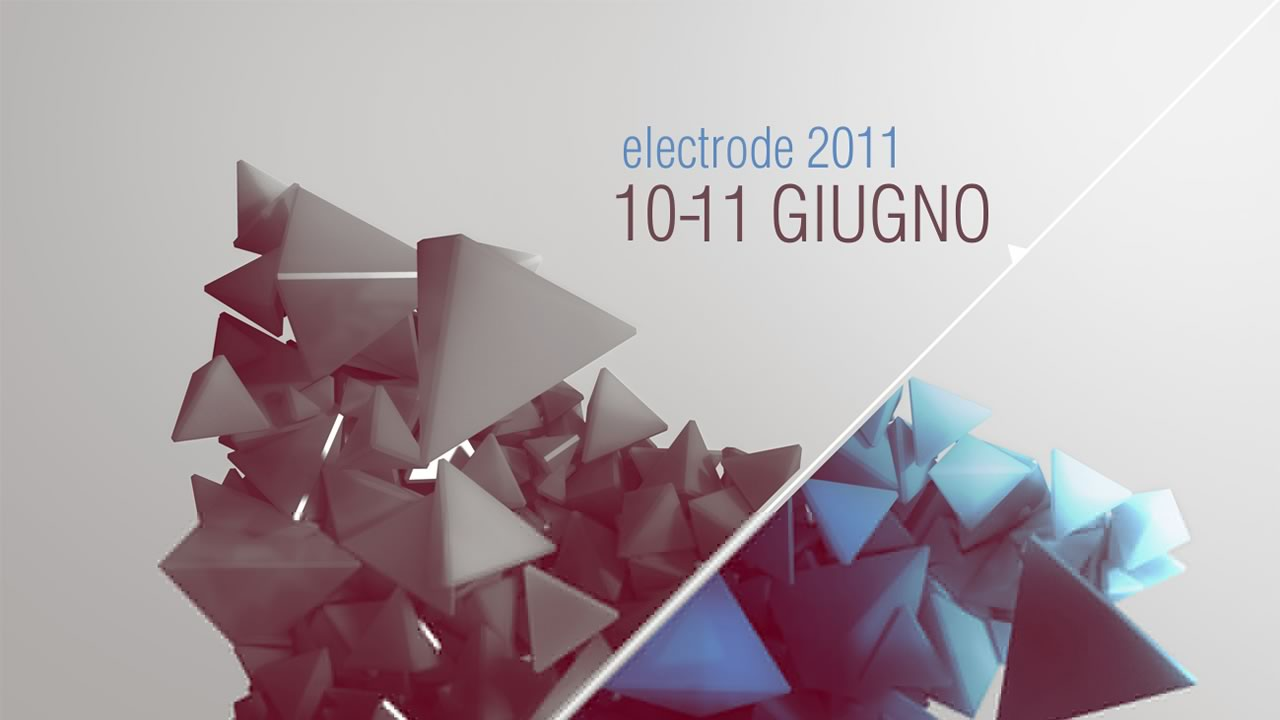 LPM 2011 Rome | Electrode 11