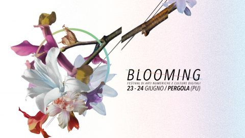 Image for: Blooming Festival 2017