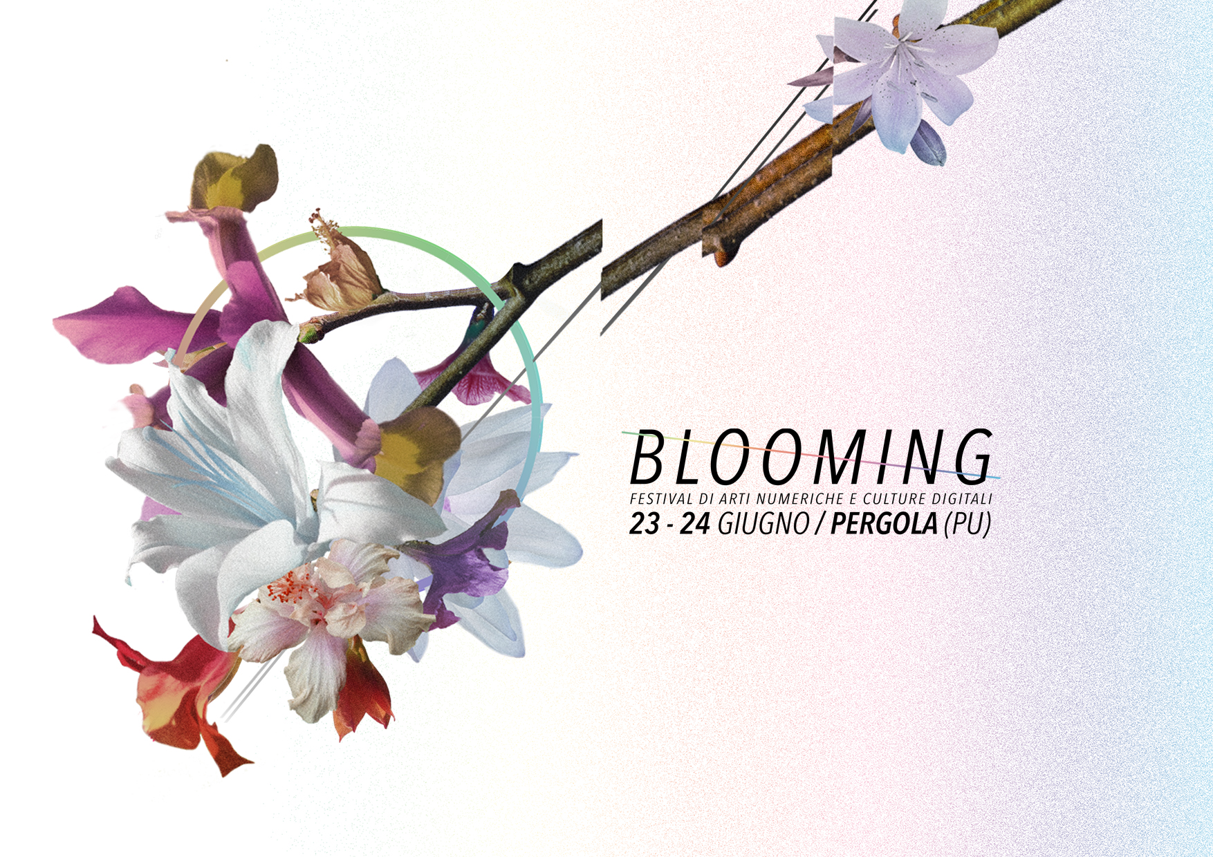 (English) Blooming Festival 2017